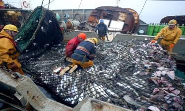لجنة الصيد البحري بالبرلمان الأوروبي تصادق بأغلبية واسعة على اتفاق الصيد البحري بين المغرب والاتحاد الأوروبي