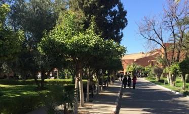 تتويج جامعة القاضي عياض بمراكش بجائزة أحسن جامعة مغربية في البحث العلمي