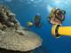 L'héritage de Cousteau, retour aux secrets de la mer