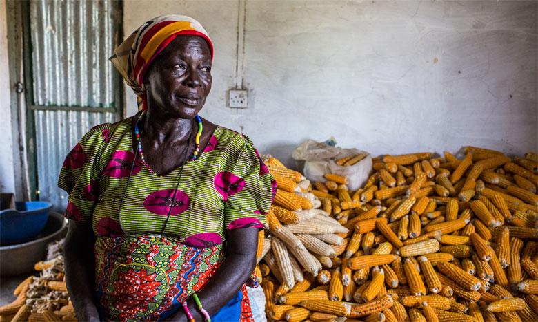 En Afrique subsaharienne, 1,5°C de réchauffement d'ici 2030 pourrait faire qu'environ 40% des zones actuelles de culture du maïs ne seraient plus adaptées aux variétés actuelles. Ph. Oxfam