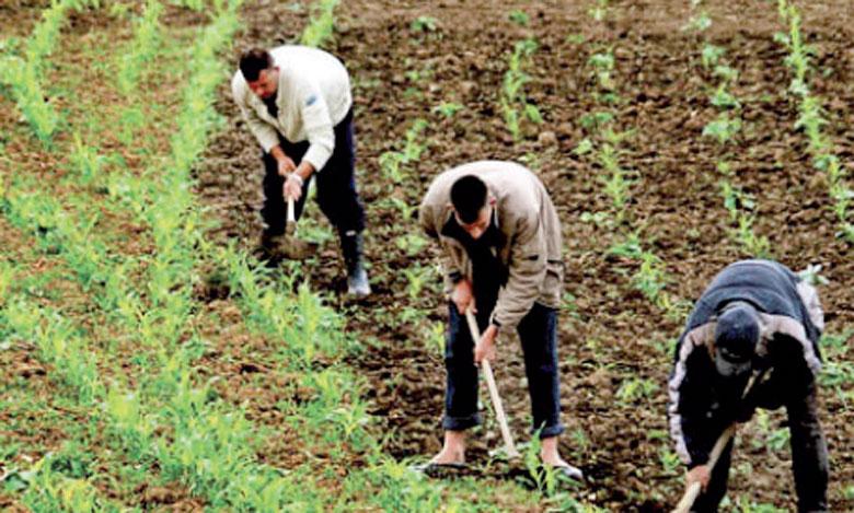 Selon le département de l'Agriculture, il est nécessaire d'offrir aux jeunes ruraux un emploi productif, dans un milieu où les services de base et les loisirs sont accessibles.