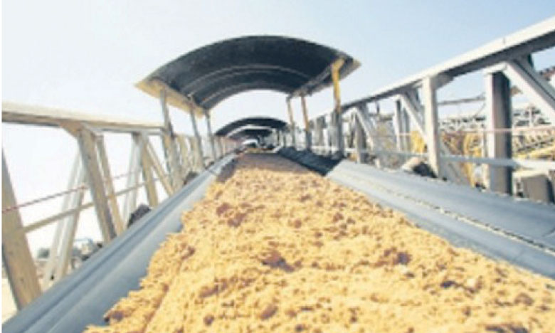 Le gisement de Khémisset, «le plus rentable au monde»