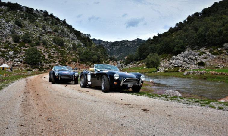 Une véritable parade de luxe, ornée de bijoux mécaniques portant la griffe de marques emblématiques à l'instar de Ford, Mercedes-Benz, Porsche, Jaguar, Ferrari et Shelby.