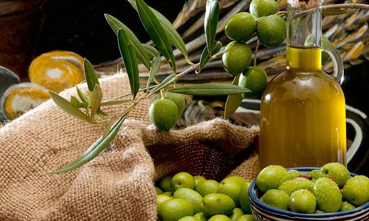 L'huile d'olive de Nador aura  son signe d'origine et de qualité
